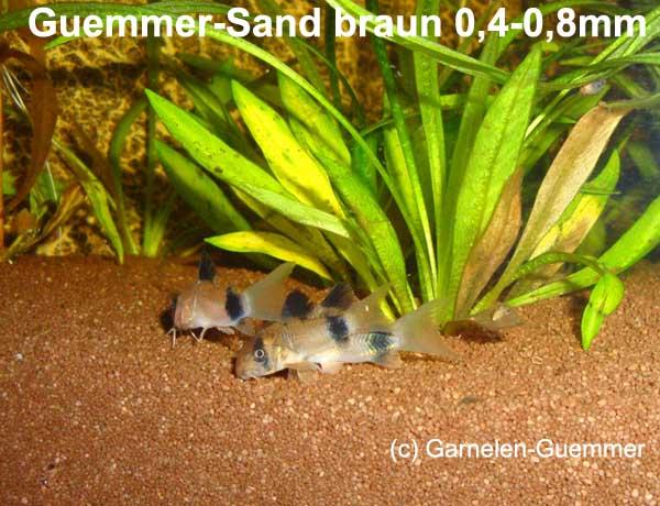 Aquariensand Welse braun 0,4-0,8mm